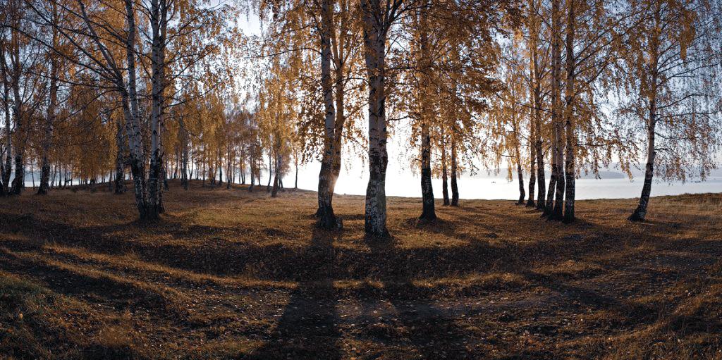 Small Ural Village